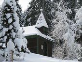Naturreise in den Schnee
