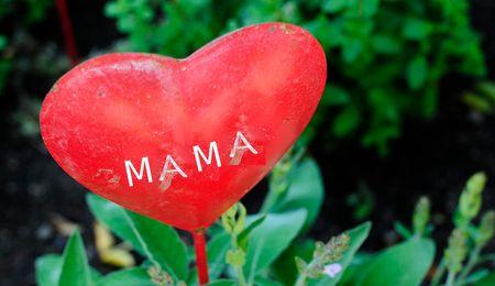 """Speciale """"Festa della mamma"""""""