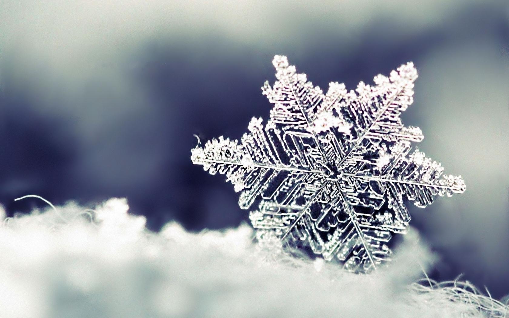 Schneekristall & Adventwochen