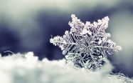 Semaines Flocons de neige & Magie de l'Avent