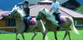 Galtenberg horse riding package | 7 nights