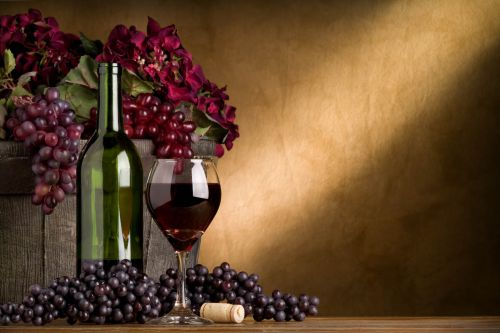 Wine & Wellness – Gourmet Days