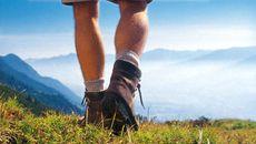 alpina wandelarrangement | 5 nachten