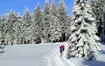 """Unsere """"Winter-Hofwochen"""""""
