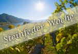 Steinfeder-Woche