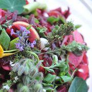 Herbstliches basenfasten – die wacker-methode®