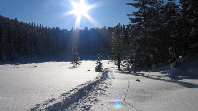 WWW - Winter Wander Wochen