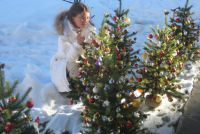 "Christmas at the hotel ""Adler"" / 4-nights-package"