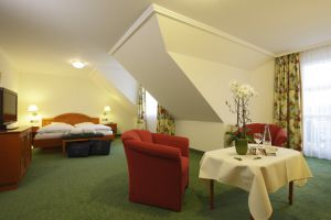 "Double room ""Adlerweiher III First"""