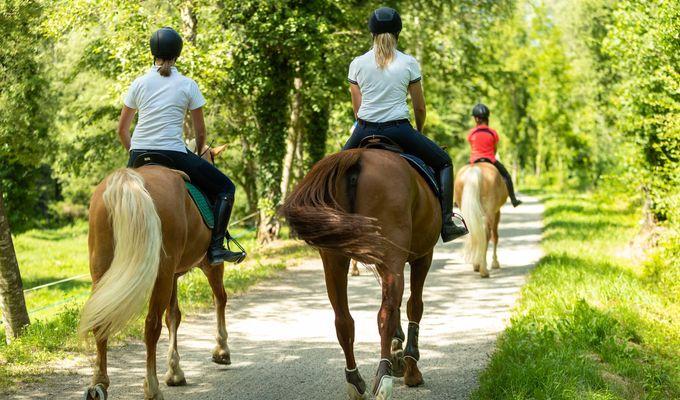 Offerta equitazione
