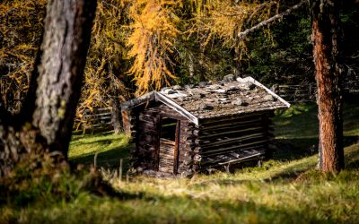 Stubaier Bergherbst | 2. Zeitraum 3 Nächte