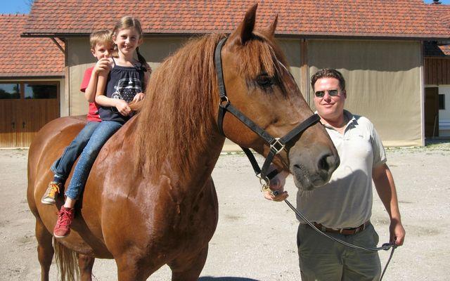 Pferdereiten in Slowenien