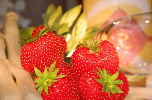 Erdbeerzeit im REBSTOCK