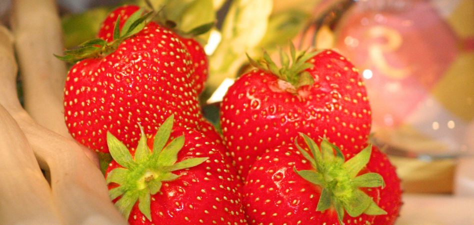 Strawberrytime in the REBSTOCK 1/3