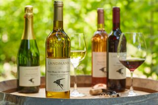 Klassische Weindegustation