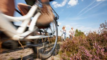 e-bike Radtouren Lüneburger Heide