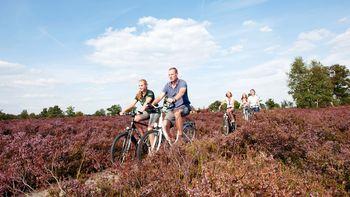 Radfahren Lüneburger Heide