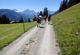 Semaines de randonnées | No 5