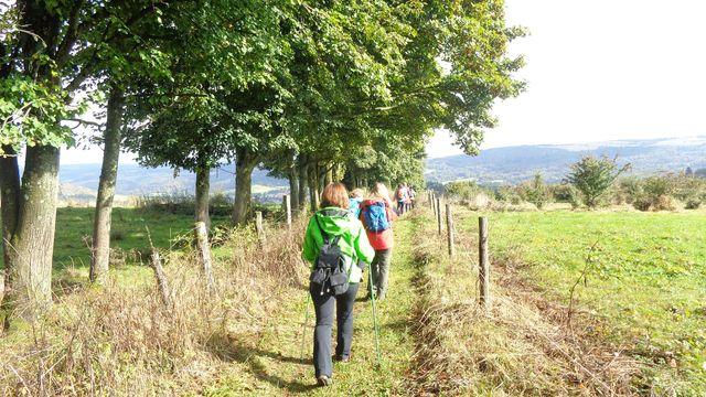 Fasten-Wandern nach Buchinger